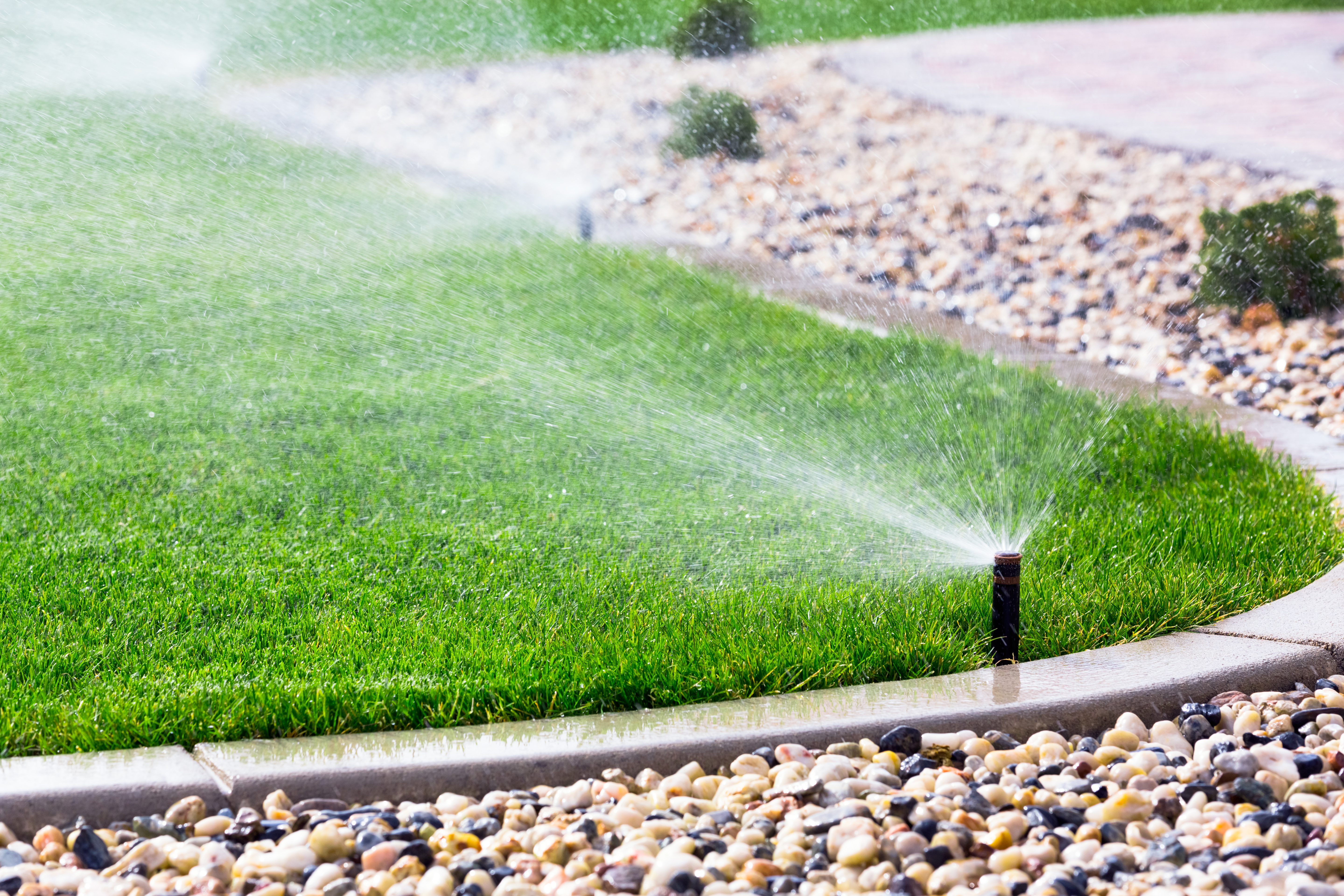 Is Your Irrigation System Ready for Spring? Do a Spring Irrigation Check-Up!