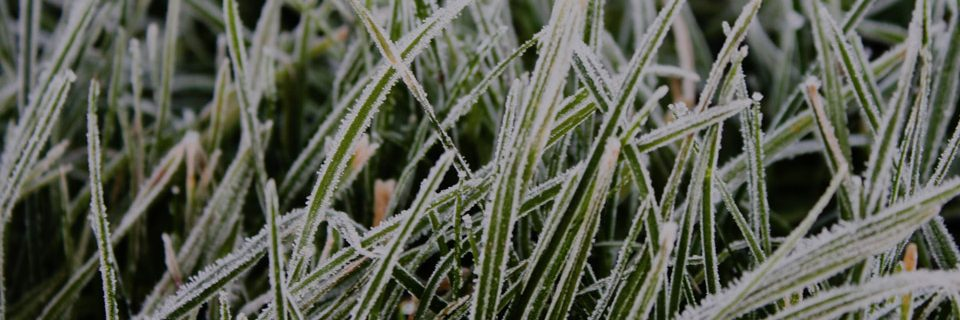 Temperatures are expected to drop below freezing this week. Contact us for any repair and winterization service you need.